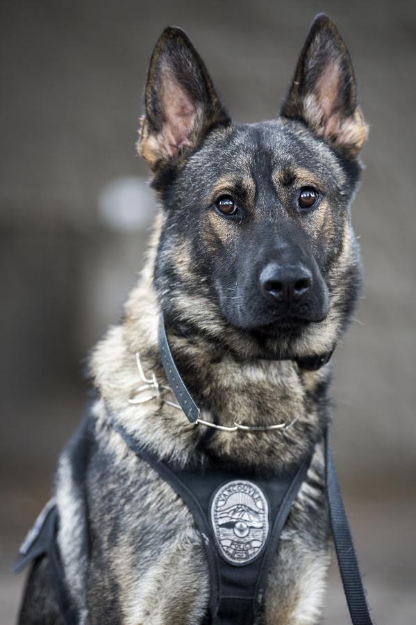 k9 police dog fund raiser event